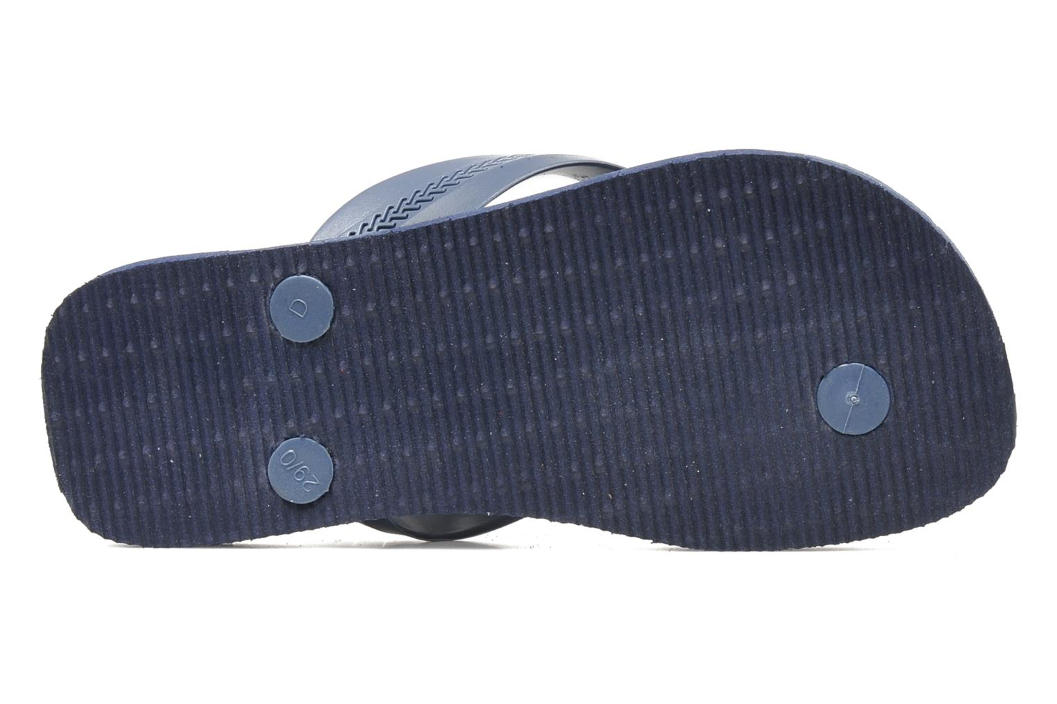 Flip flops Havaianas Kids Max Cars Blue view from above
