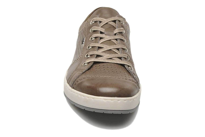 Sneaker Josef Seibel Gateo 01 braun schuhe getragen