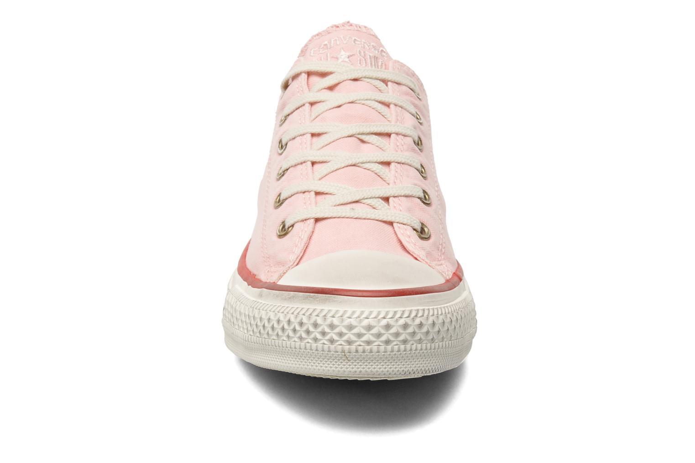 Sneaker Converse Chuck Taylor All Star Well Worn Ox W rosa schuhe getragen