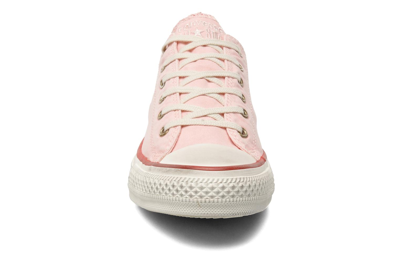 Trainers Converse Chuck Taylor All Star Well Worn Ox W Pink model view
