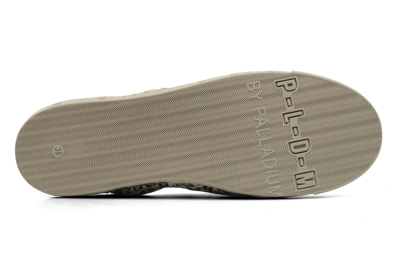 Sneakers P-L-D-M By Palladium Bora Print Multicolor boven
