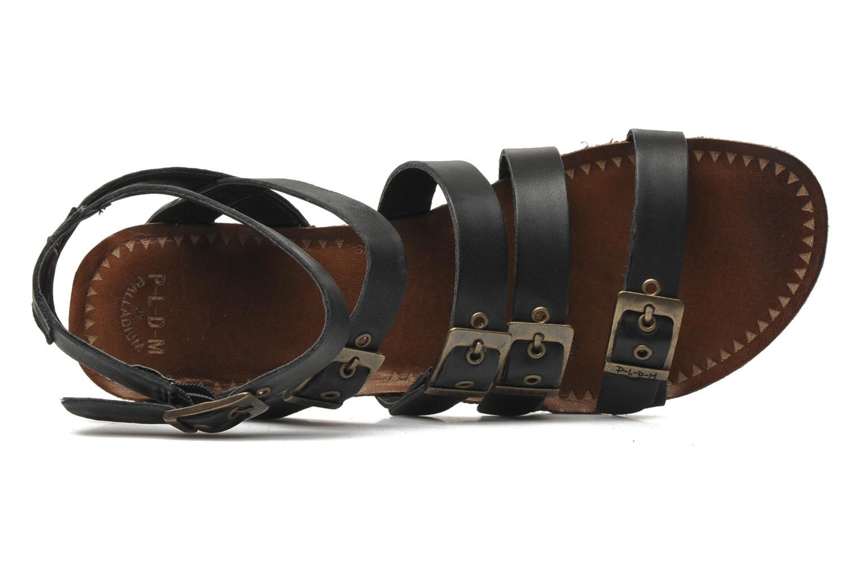 Sandalen P-L-D-M By Palladium Prissy schwarz ansicht von links