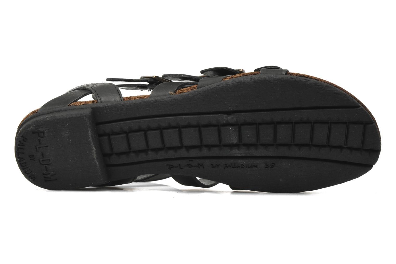Sandalen P-L-D-M By Palladium Prissy schwarz ansicht von oben