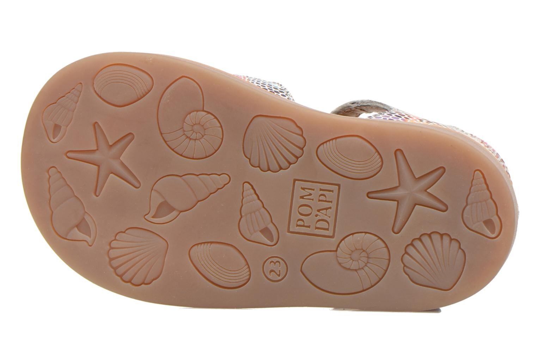 Sandales et nu-pieds Pom d Api POPPY BUCKLE Multicolore vue haut