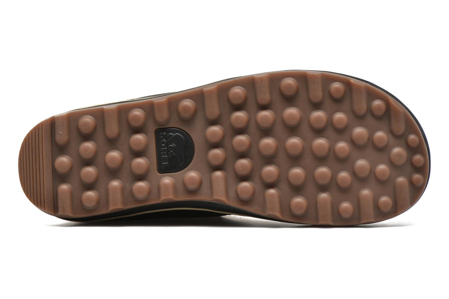 Sport shoes Sorel Glacy Explorer Shortie Brown view from above