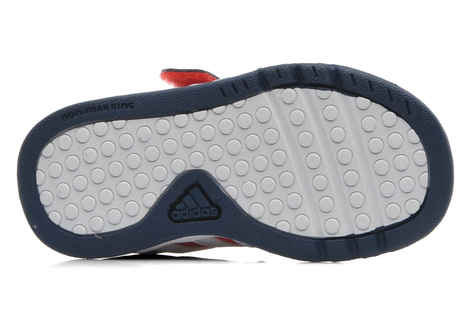 Baskets Adidas Performance LK Trainer 6 CF I Bleu vue haut