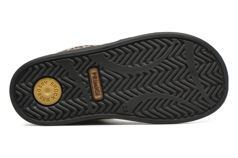 Stiefeletten & Boots Primigi ROOKY beige ansicht von oben