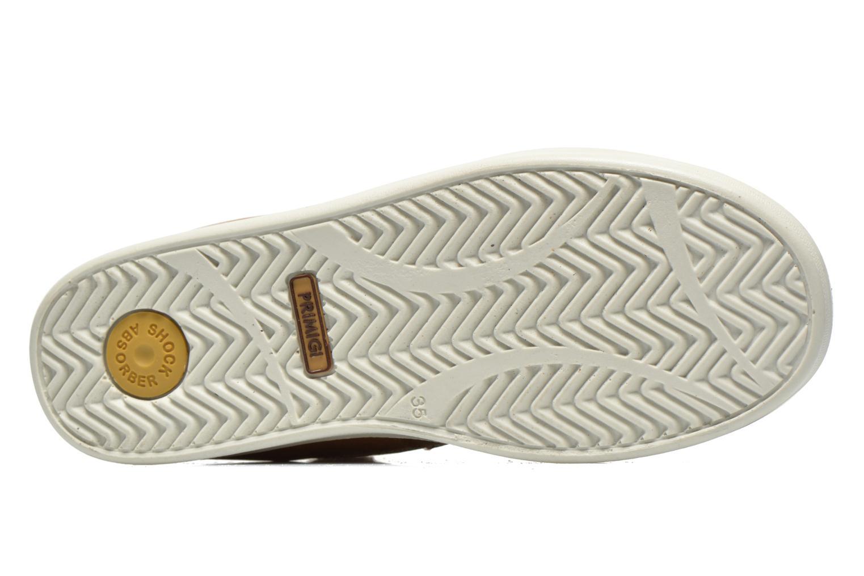 Sneakers Primigi ROLAND Marrone immagine dall'alto