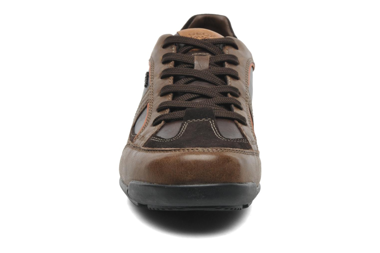 Sneakers Geox U CART B U44S4B Bruin model