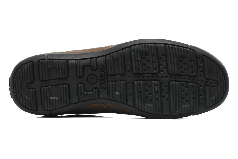 Sneakers Geox U CART B U44S4B Bruin boven