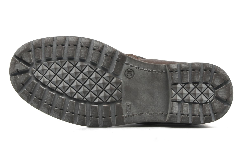 Stiefeletten & Boots P-L-D-M By Palladium Charline braun ansicht von oben
