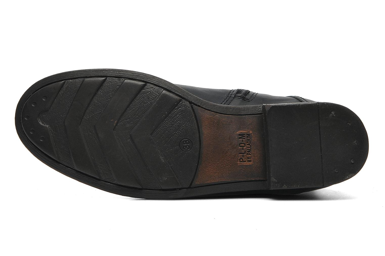 Stiefeletten & Boots P-L-D-M By Palladium Udita schwarz ansicht von oben
