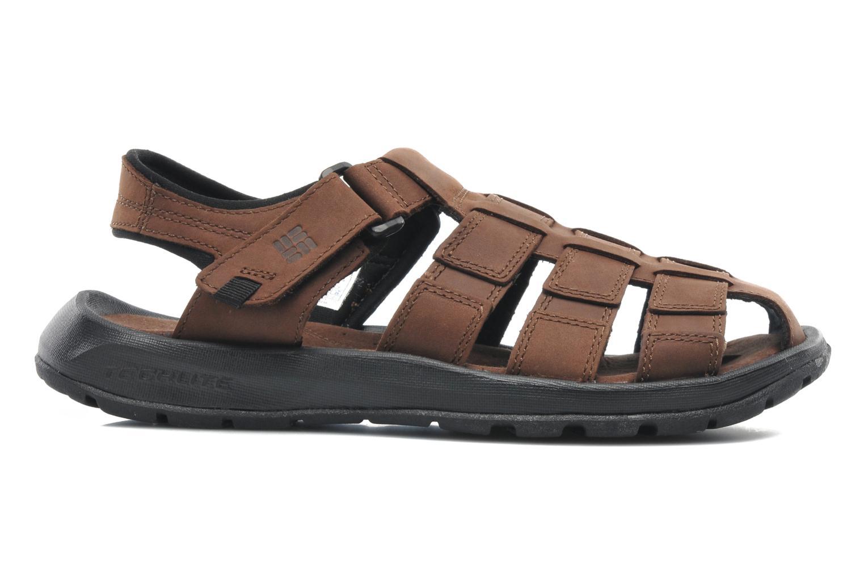 Sandales et nu-pieds Columbia Levanto Marron vue derrière