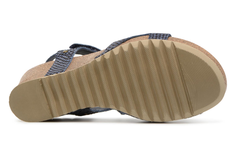 Sandaler Panama Jack Julia Blå bild från ovan