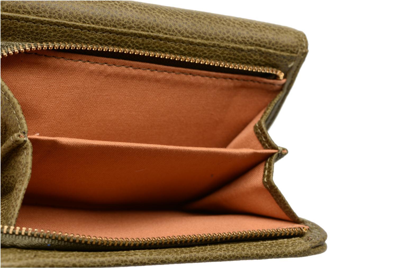 Portemonnaies & Clutches Nat & Nin Lotti grün ansicht von hinten