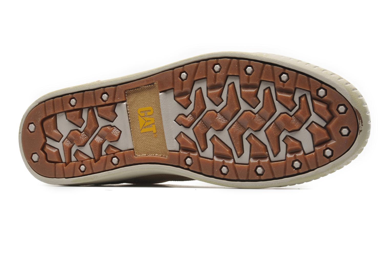 Sneaker Caterpillar Zimzala canvas beige ansicht von oben