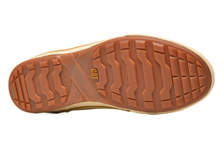 Sneakers Caterpillar Esteem canvas Beige boven