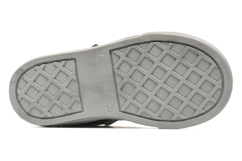 Sneakers Primigi RHOY-E Azzurro immagine dall'alto