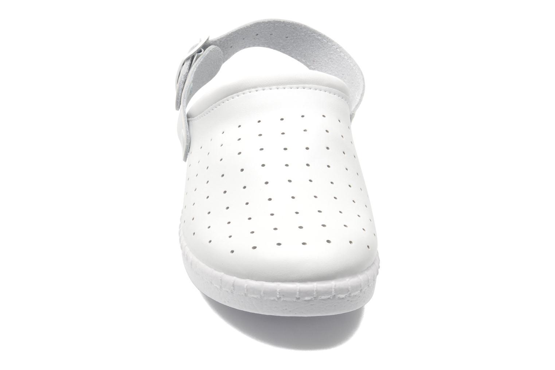 Cony Blanc