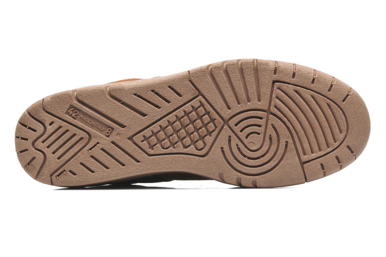 Sneakers UMO Confort Atlas Marrone immagine dall'alto