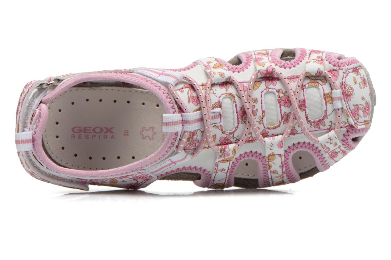 J S.Roxanne C J52D9C White/pink