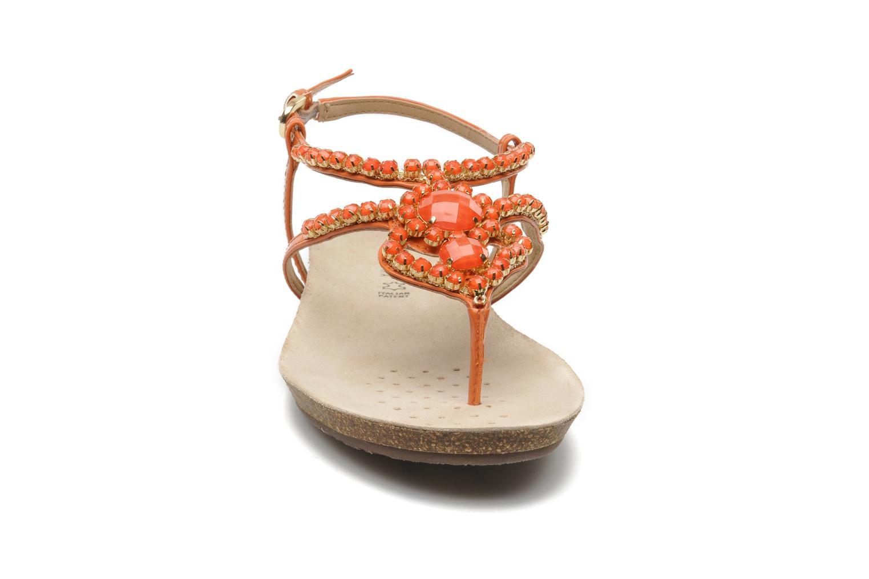 Sandales et nu-pieds Geox D VINCA F-D5297F Orange vue portées chaussures