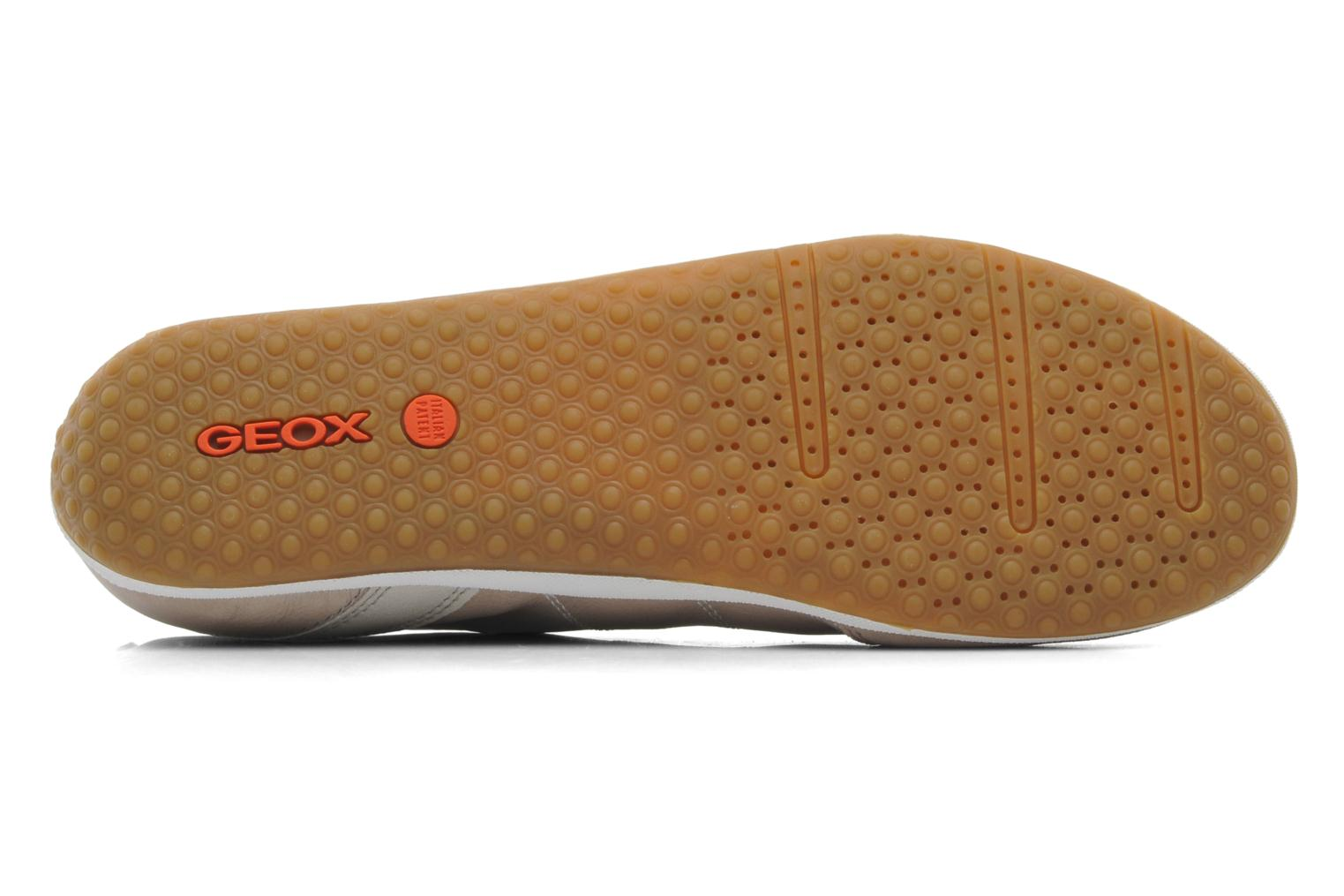 Trainers Geox D VEGA A D3209A Beige view from above