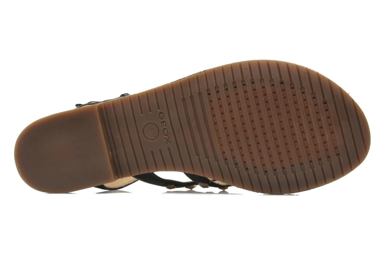 Sandals Geox D JOLANDA E D5275E Black view from above