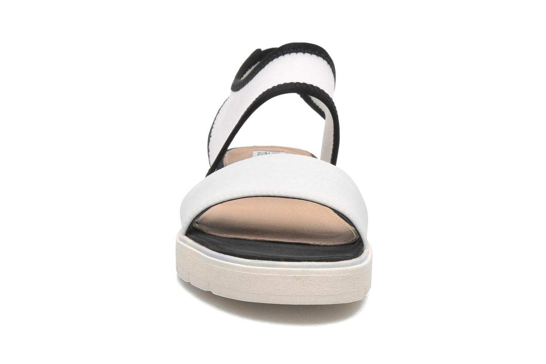 Sandales et nu-pieds Steve Madden PRESSIN Blanc vue portées chaussures