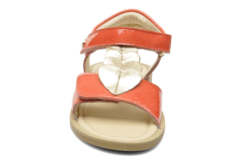 Sandales et nu-pieds Naturino Maria 3951 Rose vue portées chaussures