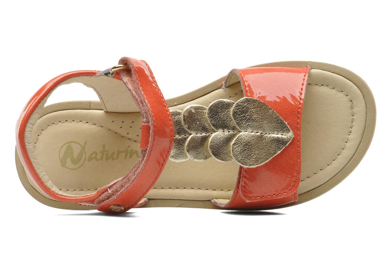 Sandales et nu-pieds Naturino Maria 3951 Rose vue gauche