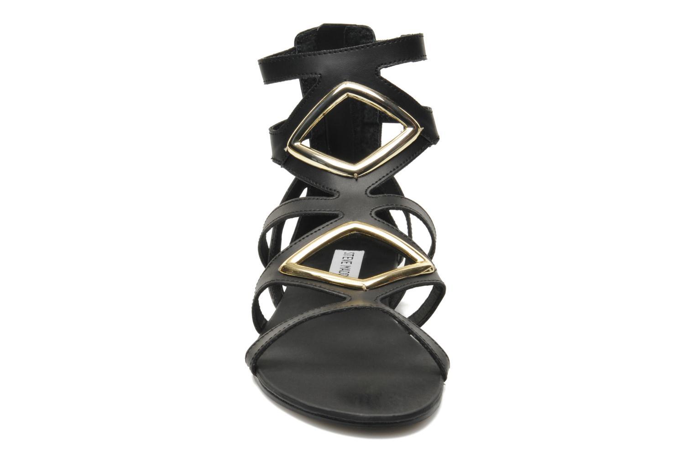 Sandales et nu-pieds Steve Madden TELLY Noir vue portées chaussures