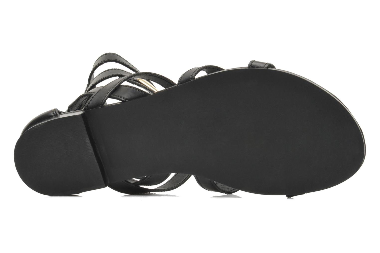 Sandales et nu-pieds Steve Madden TELLY Noir vue haut