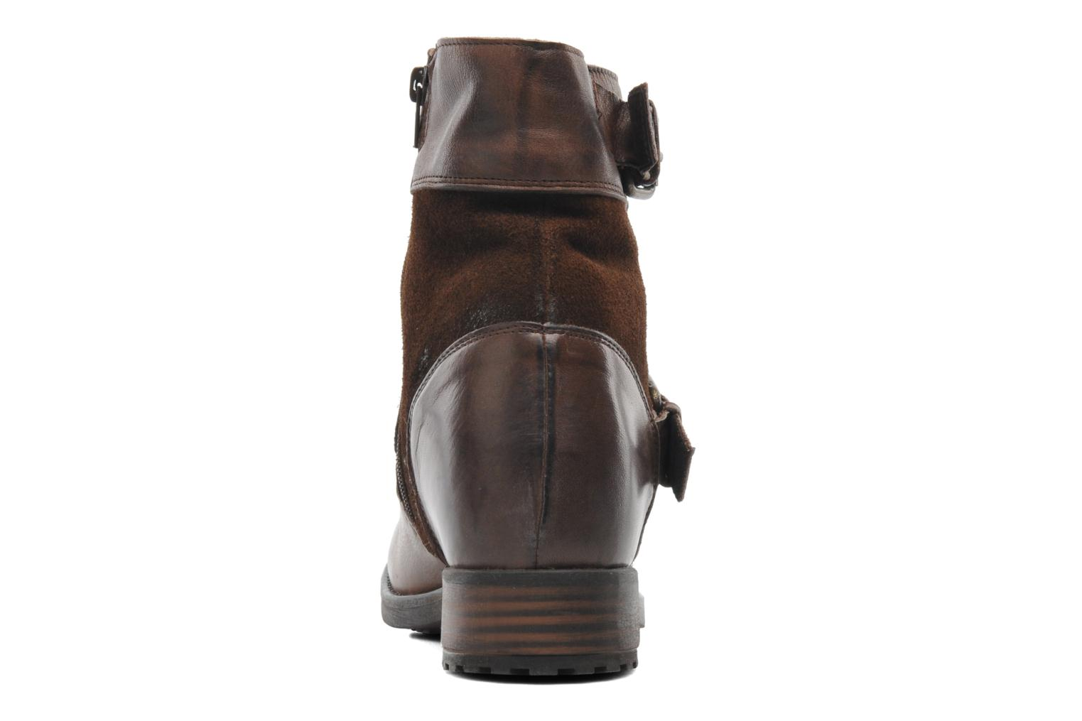 Ankle boots Buffalo Nelly Brown view from the right