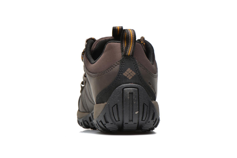 Chaussures de sport Columbia Peakfreak Venture Waterproof Marron vue droite