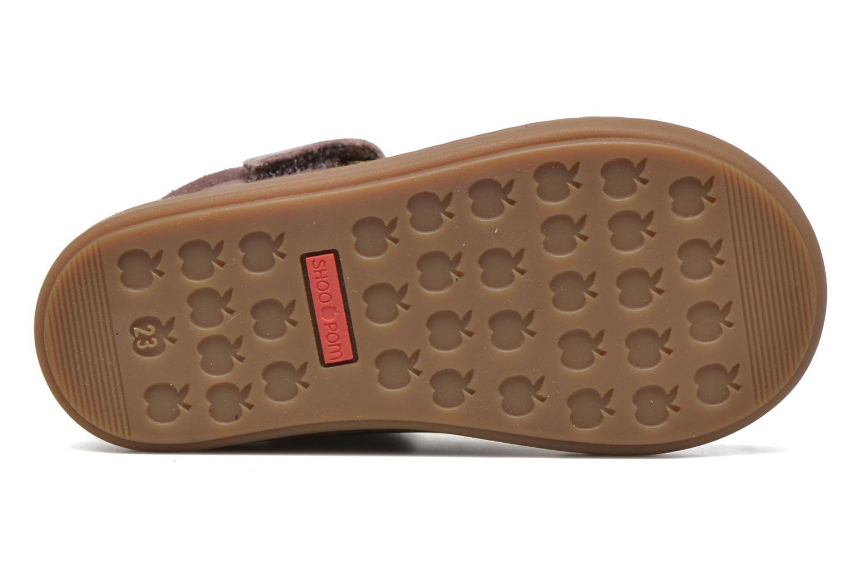 Stiefeletten & Boots Shoo Pom Bouba Bi Zip Lipiz rosa ansicht von oben