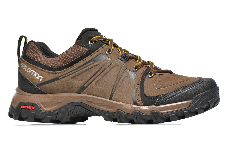 Chaussures de sport Salomon Evasion LTR Marron vue derrière