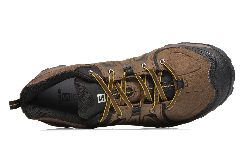 Chaussures de sport Salomon Evasion LTR Marron vue gauche