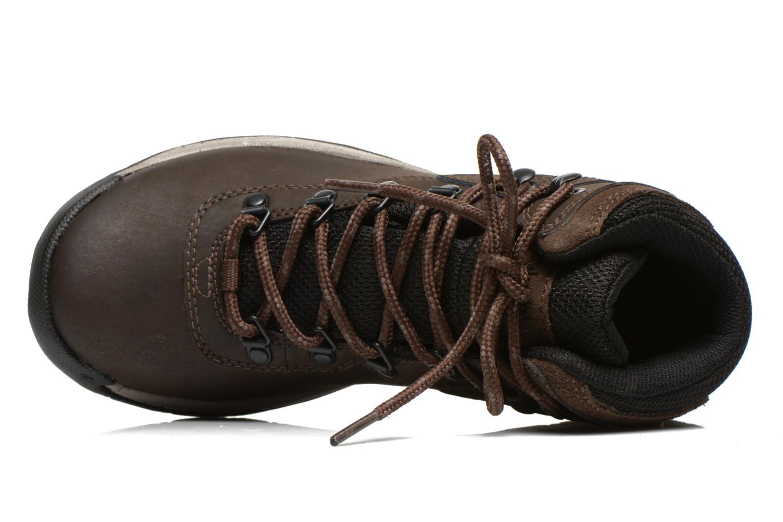 Chaussures de sport Columbia Newton Ridge Plus II Waterproof W Marron vue gauche