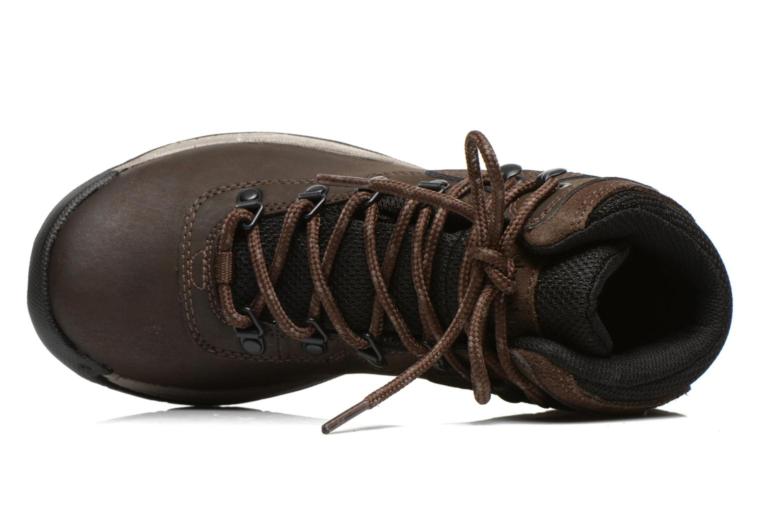 Chaussures de sport Columbia Newton Ridge Plus II Waterproof W Marron vue gauche
