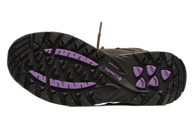 Chaussures de sport Columbia Newton Ridge Plus II Waterproof W Marron vue haut