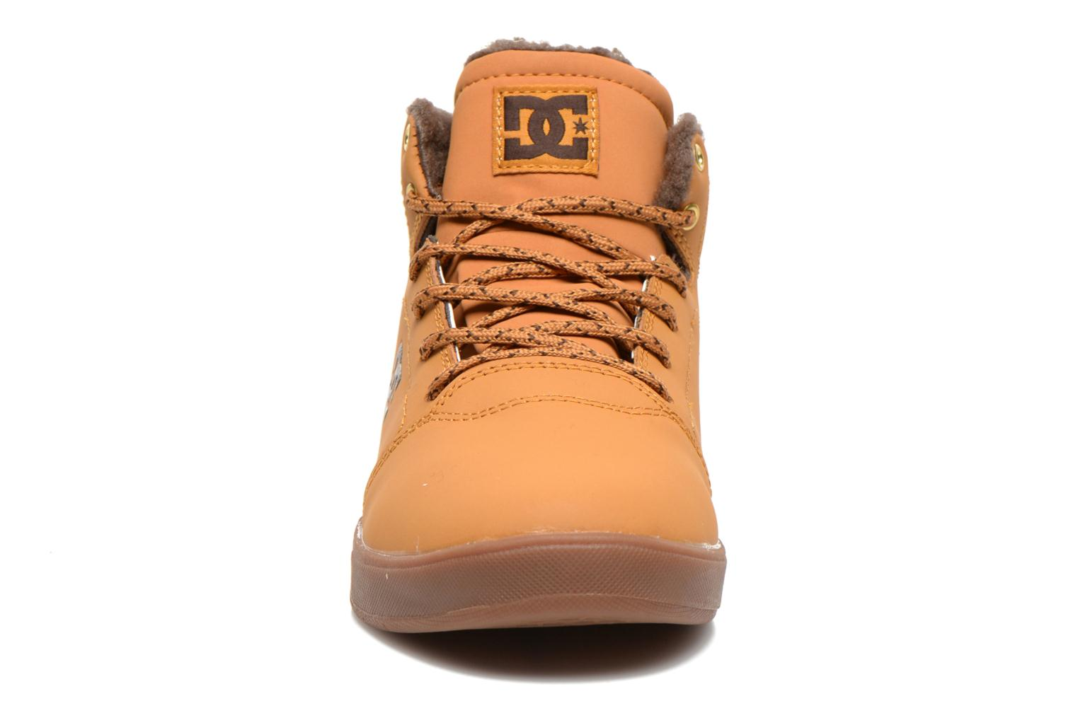 Sneakers DC Shoes CRISIS HIGH WNT Beige modello indossato