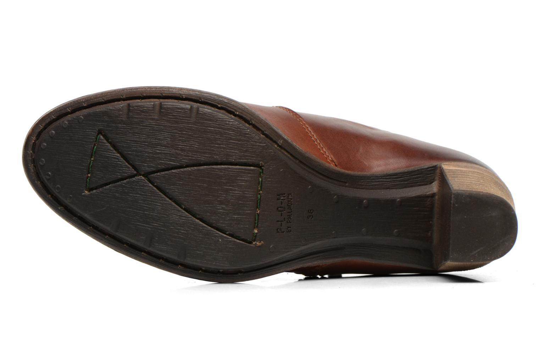 Bottines et boots P-L-D-M By Palladium Spring CT Marron vue haut