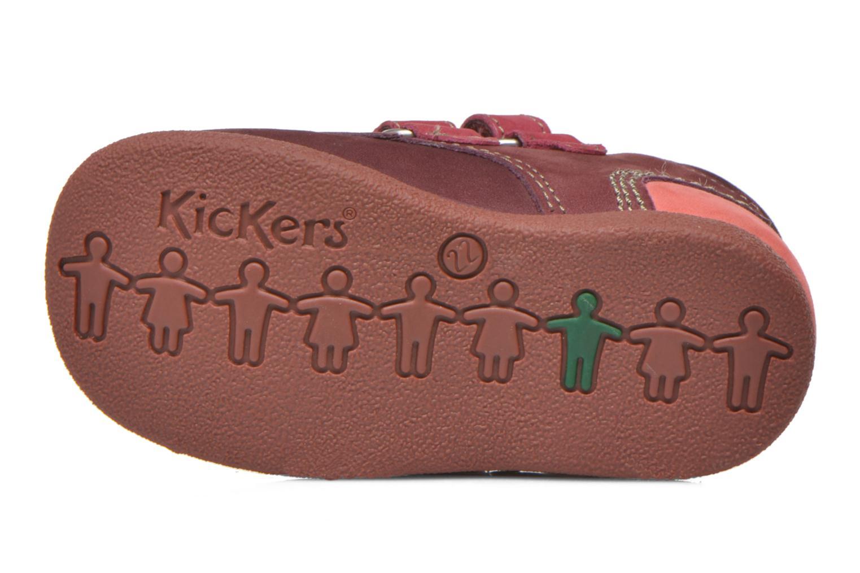 Chaussures à scratch Kickers Babyscratch Bordeaux vue haut