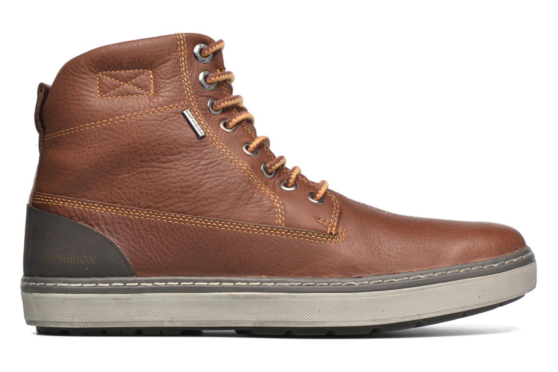 Ankle boots Geox U MATTIAS ABX C U44T1C Brown back view