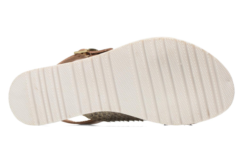 Sandales et nu-pieds Elizabeth Stuart Polka 882 Or et bronze vue haut