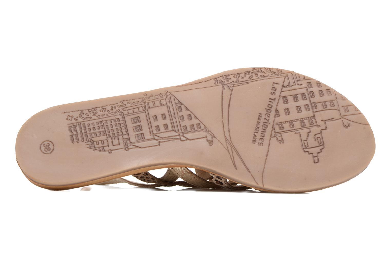 Sandales et nu-pieds Les Tropéziennes par M Belarbi Belinda Or et bronze vue haut