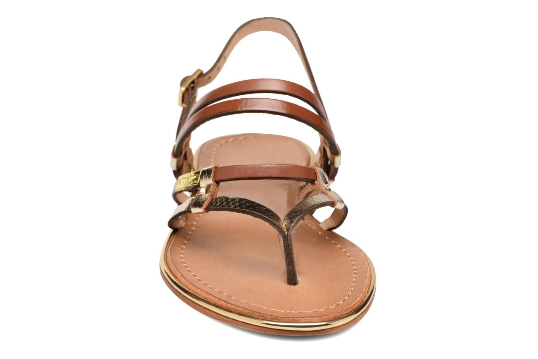 Sandales et nu-pieds Les Tropéziennes par M Belarbi Cumin Marron vue portées chaussures