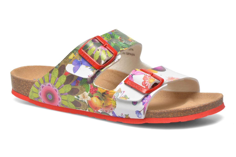 Mules & clogs Desigual SHOES_BIO 2 Multicolor detailed view/ Pair view