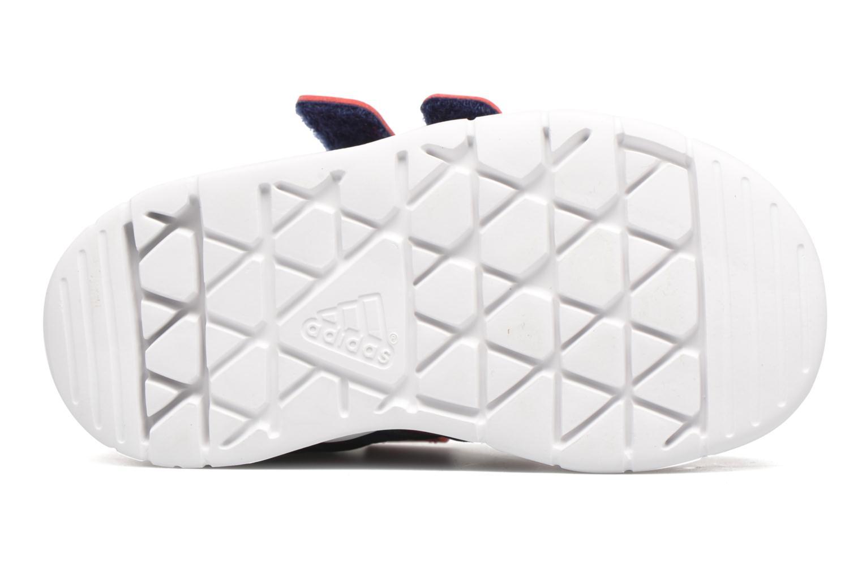 Sportschuhe Adidas Performance LK Trainer 7 CF I rosa ansicht von oben